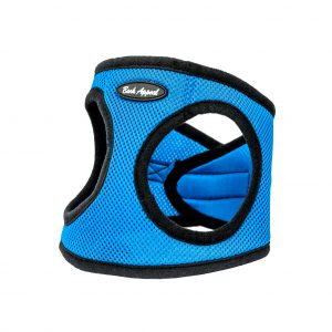 blue mesh step-in dog harness