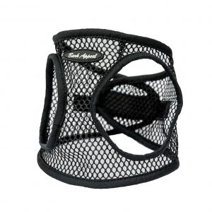 black netted step in dog harness