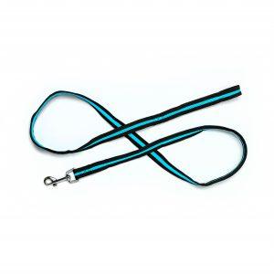 aqua blue mesh dog leash