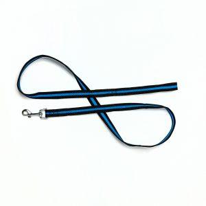 royal blue mesh dog leash
