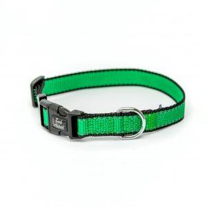 bright green Reflective Trim dog Collar