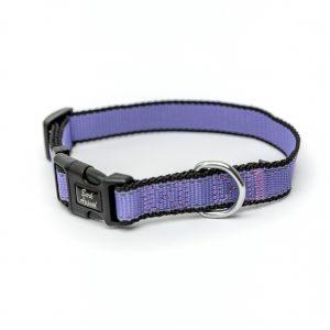 purple lavender Reflective Trim dog Collar