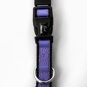 purple Reflective Trim cat Collar