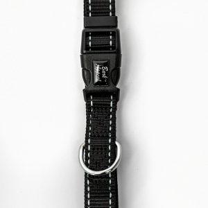 Black Reflective Trim Collar dog