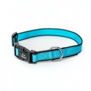 aqua blue Reflective Trim dog Collar