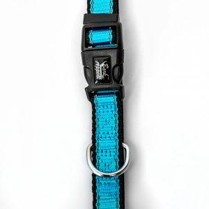 light blue Reflective Trim dog Collar