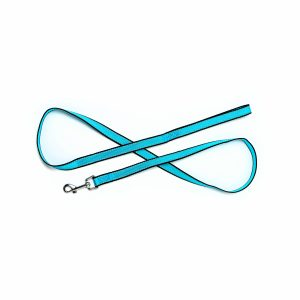 Aqua Blue Reflective Trim Leashes 5'
