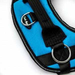 light blue reflective no pull dog harness detail